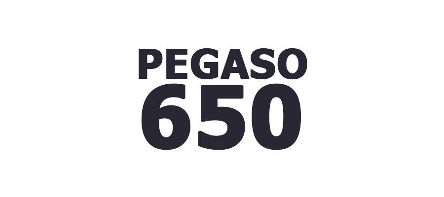 PEGASO 650