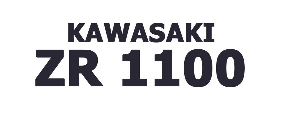 ZR 1100